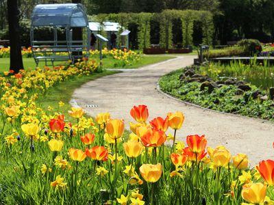 Gartenpark im Frühling