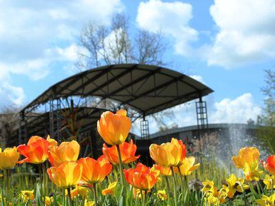 Frühling im Gartenpark