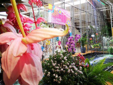 Wasserspiele in der Blumenhalle