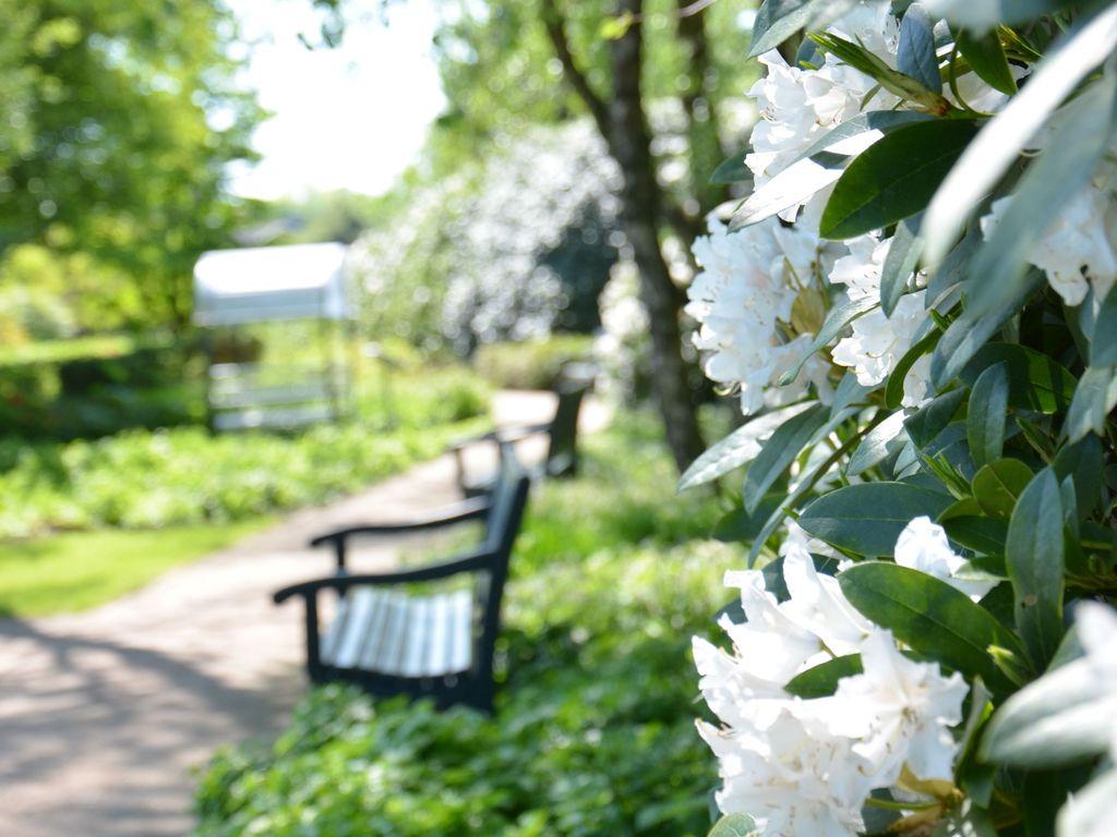 Bank vor Rhododendron