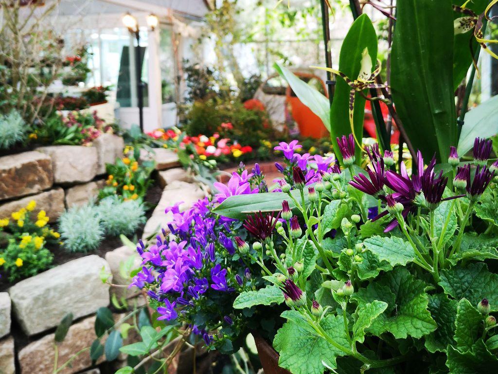 Ein Käfer in der Blumenhalle